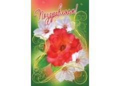 открытка Оля/Женя средний формат (3ВКТ, 3КФ, 3ФТ)