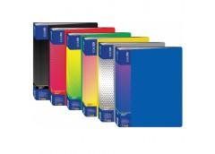 папка Economix E30610 со 100-а файлами в боксе пласт. А4  (6/24)